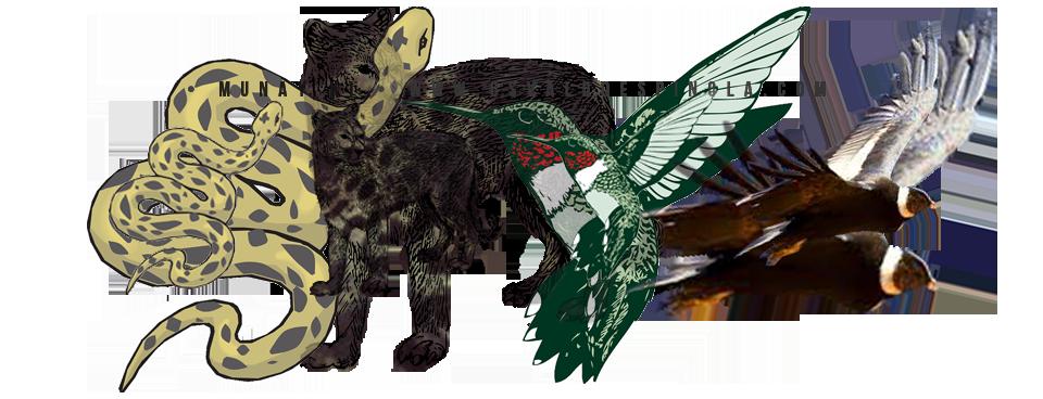 MUNAY-KI-ANIMALES-DE-PODER-CURSOS